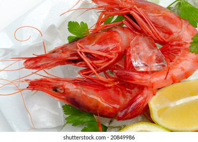 shrimps with lemon on ice