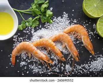 Shrimps on dark background