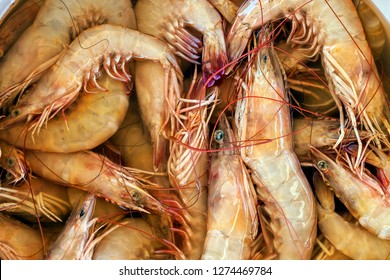 Shrimps or Prawns. The term prawn is less commonly used in the United States, being applied mainly to larger shrimp and those living in freshwater. Other names: Jumbo and King shrimps or Prawns.