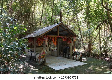 shrine of the ancestor in the forest