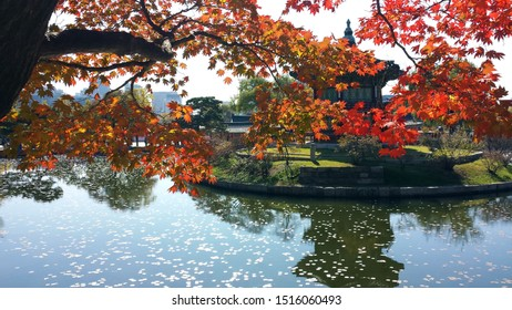 A shrine in Seoul in the Fall, with colorful foliage in the foreground.