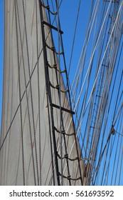 Shroud, sail and rope ladder of a sailboat