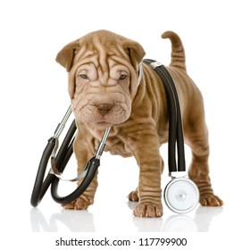 shrpei puppy dog with a stethoscope on his neck. isolated on white background