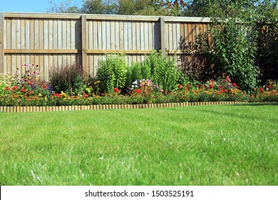 Shrubs And Flowers In A Border Surrounded By A Wooden Panel Fence And Grass Lawn In A Back Garden. - Shutterstock ID 1503525191