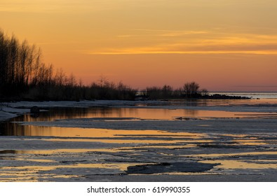 shrubs, trees reflected in the water of the Gulf of Finland, ice, pink and yellow clouds at sunset