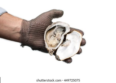 Shuck, opening french oysters