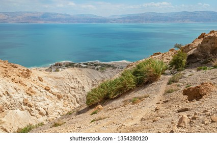shulamit spring sits high up the rugged desert mountains above ein gedi at the  dead sea in israel