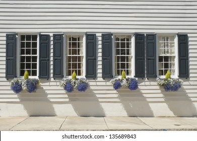 Shuttered windows decorated with flowers and plants in the wall of an eighteenth century house.