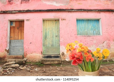 Shuttered Wooden Window and Doors in Guatemala City, Decorated With Fresh Flowers. Bright Pink and Aqua surfaces on dwelling.