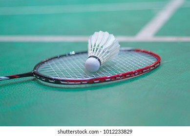 shuttlecock and badminton racket in  court.