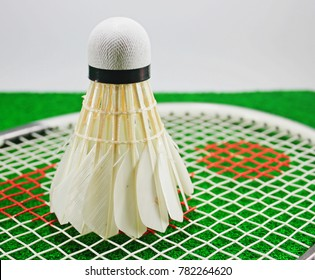 Shuttlecock and Badminton racket, put on a green background.