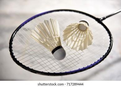 shuttlecock and racket