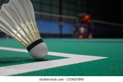 The shuttlecock will float before reaching the line. In the badminton court