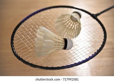 shuttlecocks lay on racket