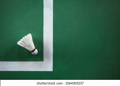 Shuttlecocks on badminton courts.
