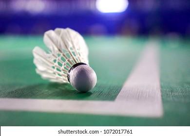 Shuttlecocks on badminton courts.