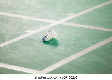 Shuttlecocks on green Badminton court