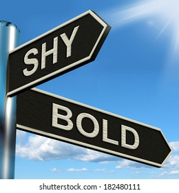 Shy Bold Signpost Meaning Introvert Or Extrovert