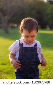 Shy toddler looking down while posing in green field during sunset