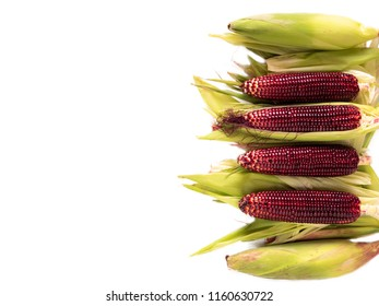 Siam Ruby Queen or Red corn of Thailand is a type of sweet corn. Red corn's kernels are stained with hues of ruby, Can be eaten fresh. The taste is sweet and crisp.with clipping path