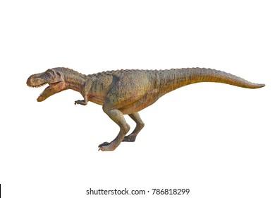 Siamotyrannus Dinosaurs were excavated in Thailand. , Dinosaur on a white background.