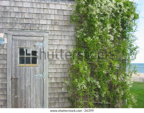 siasconset shed