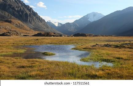 Siberian Alpine Tundra, Altai Russia