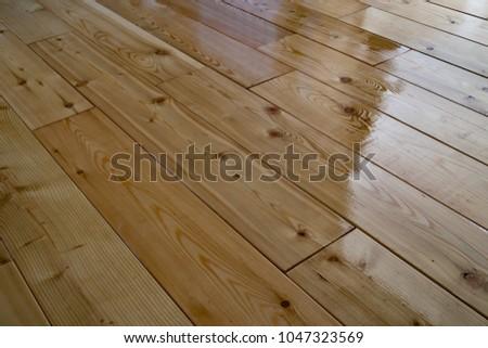 Siberian Larch Wood Floor Stock Photo Edit Now 1047323569