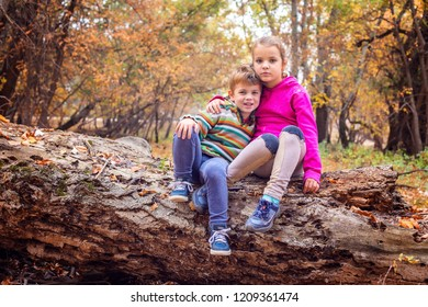 Siblings sitting on a big tree trunk hugging each other