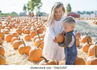Siblings Toddler Boy and Big Sister Holding a Pumpkin on a Pumpkin Farm