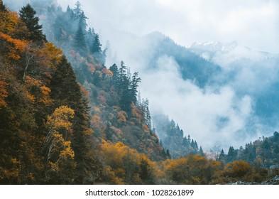 Sichuan-Tibet line scenery