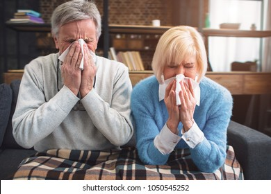 Sick couple are trying to sneeze in the napkin. They caught a cold and now have to take some medicine to get better. Close up.