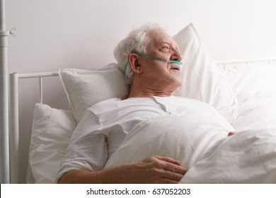 Sick elderly dying man in hospital bed looking out window