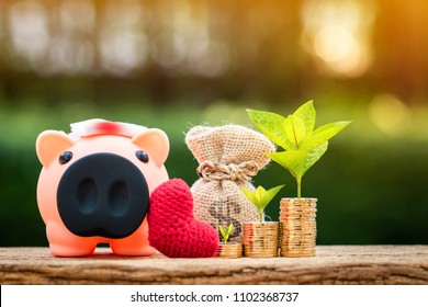 Sick piggy bank and red heart and stack gold coin with growing trees and money bag put on the wood on sunlight in the public park, saving for buy health insurance concept.