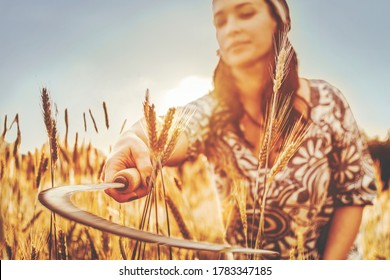 sickle in motion in a woman's hand mows wheat in a field at dawn. closeup. The bright sun is blurry in the background. selective focus. back light.