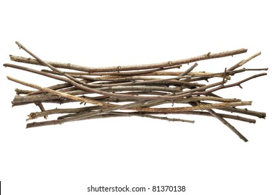 Sicks and twigs, wood bundle isolated on white background