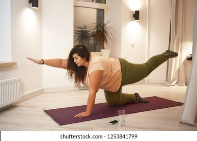 Sid view of overweight obese young woman wearing t-shirt and leggings doing physical training on mat to strengthen legs, arms, abs and spine. Weght loss, fitness, sports and active lifestyle concept