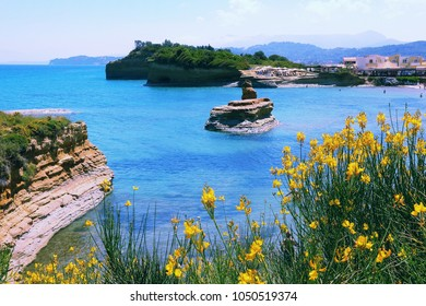 Sidari on Corfu island, Greece. Canal D'Amour rock formation - Canal of Love. Dyer's broom flowers.