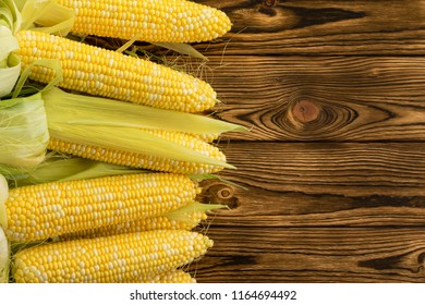 Side border of healthy organic corncobs with succulent fresh kernels on display on a wooden table at a farmers market with copy space alongside