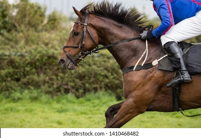 Side profile of galloping race horse, Close up on race horse and jockey in a race