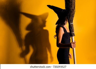 Side profile shot of satanic bad fairy enchantress, with hot figure in fashionable dark dress, prepared to take off on broom stick, her shadow is yelling and grin. Diabolic, satanic, cursed creature