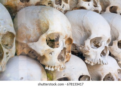 Side of Skulls Wall behind glass with tree reflection in memorial camp b