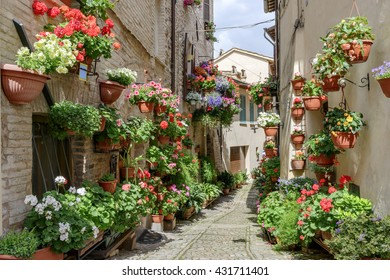 Side street with flowers in the town of Spello in Umbria, Italy