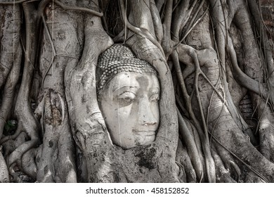 Side view of ancient buddha head in Banyan Tree Root at Wat Mahatat, Ayutthaya
