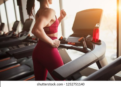 Side view of anonymous female in sportswear running on modern treadmill while exercising in gym
