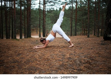 Side view of attractive advanced woman yogi with athletic strong flexible body exercising outdoors, doing yoga in forest, standing in downward-facing dog with elbows on ground and one leg raised