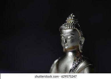 Side view of Bhagwan Buddha messenger of God