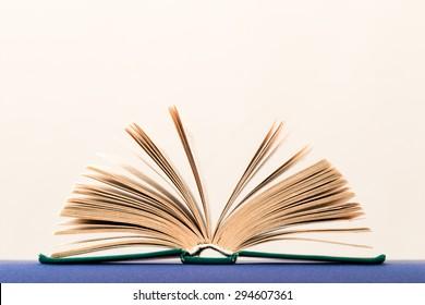 Side view of book open in shape of hand-held fan, on light background