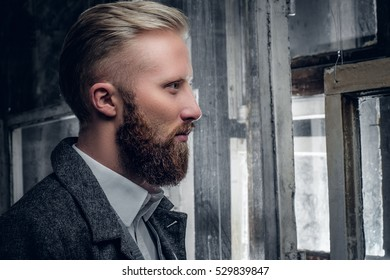Side view close up portrait of blond, bearded male.