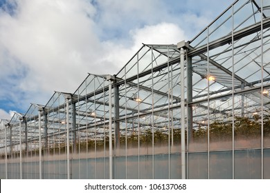Side view of a greenhouse in The Netherlands with lights inside lit